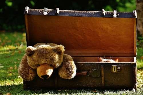 Luggage Antique Teddy Cat Hidden Soft Toy