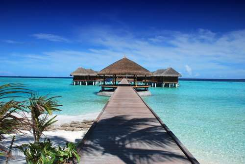 Maldives Beach Holiday Ocean Nature Sand Water