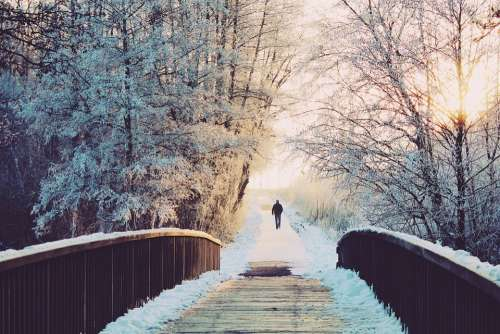 Man Bridge Lonely Walk Wintry Winter Landscape