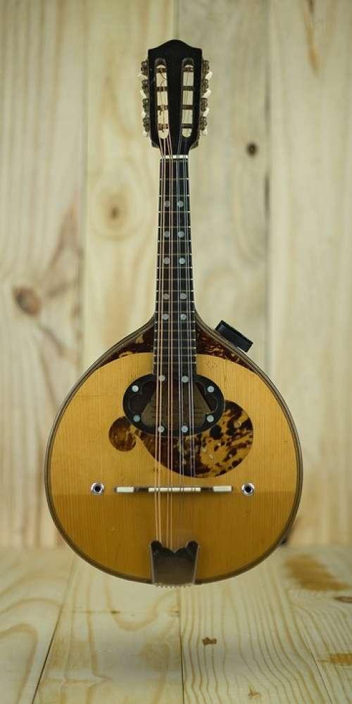 Mandolin Instrument Acoustic Music String Sound
