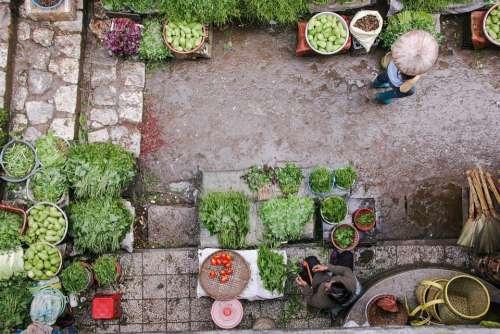 Market Vegetables Garden Asia Japan Japanese
