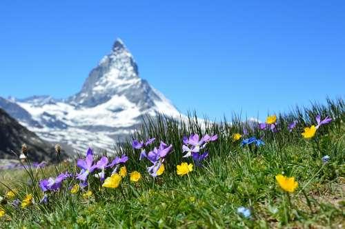 Matterhorn Alpine Zermatt Mountains Gornergrat