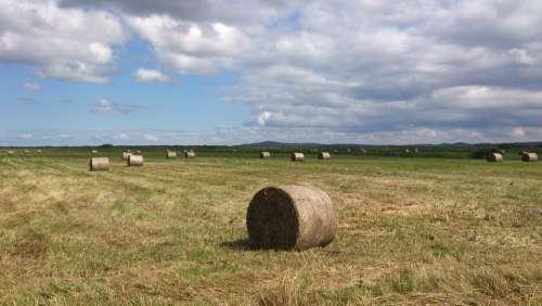 Meadow Corn Sky Harvest Stacks Dry Grass Provence
