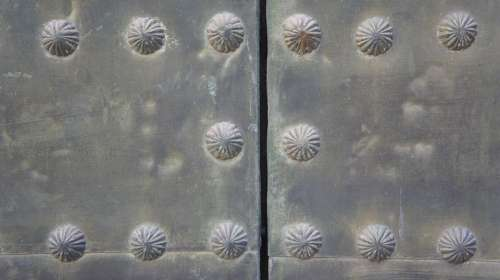 Metal Door Nails Texture Nail