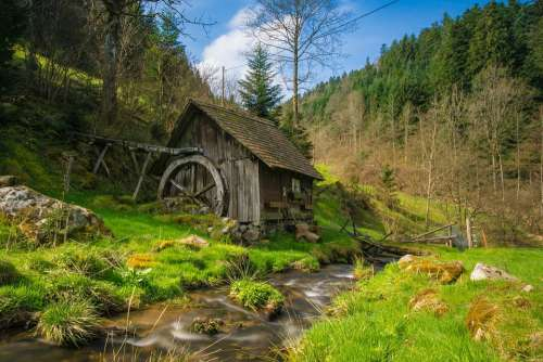 Mill Black Forest Bach Water Forest Landscape
