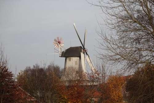 Mill Windmill Autumn Wing Building Flour Mill
