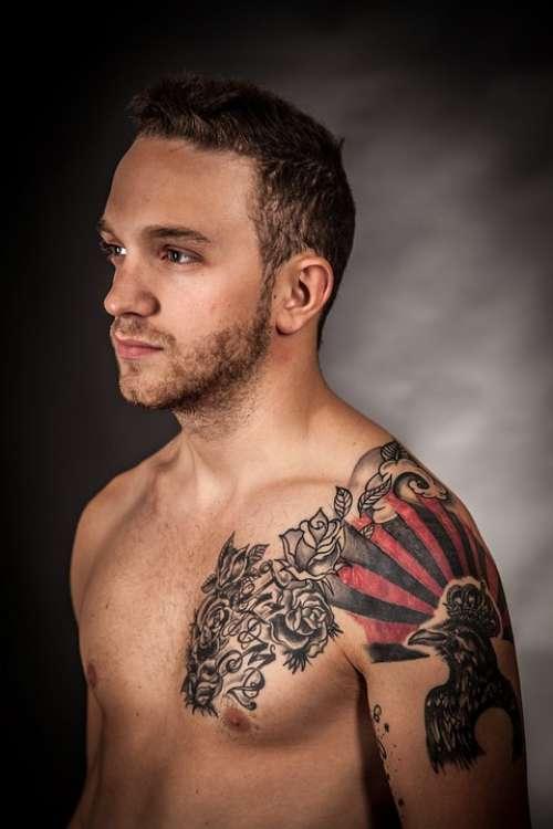 Model Tattoo Art Artistically Color Artwork Man