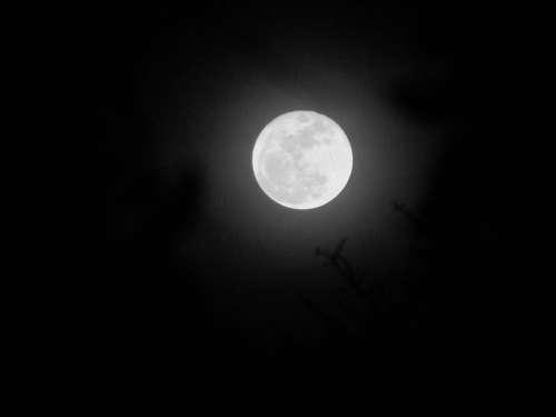Moon Sky Night Nature Moonlight Silhouette Lunar