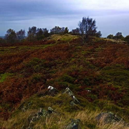 Moor Uk Leicestershire Autumn Rocks Land Wild