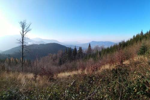Moravia Beskydy Mountains Landscape Nature Forest