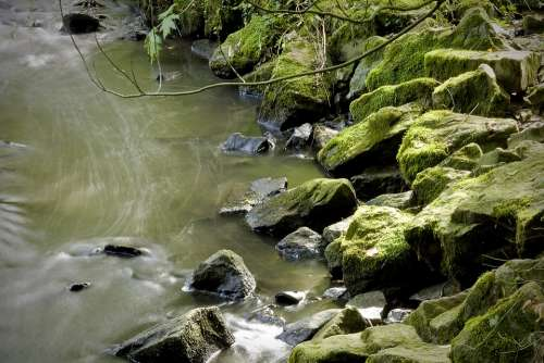 Moss River Landscape Water Nature
