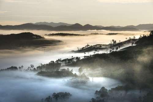 Mountains Landscape Da Lat Vietnam Planting Hills