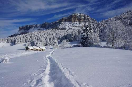 Mountains Snow Nature Alpine Cold Adventure