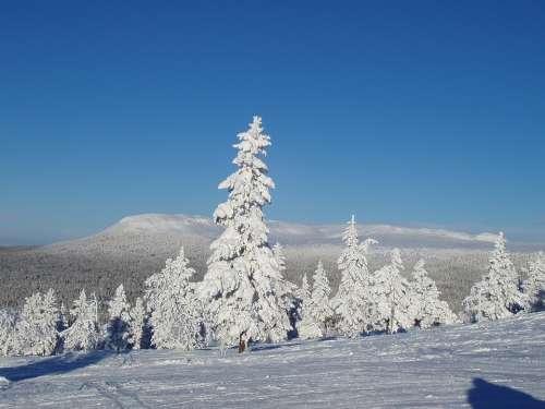 Natural Winter Snow 2