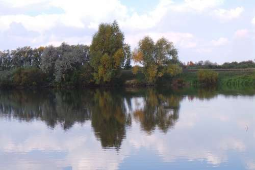 Nature Pond Lake Reflection Trees Pokoj Day