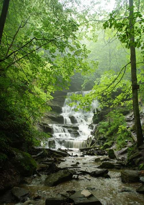 Nature Waterfall Landscape Water Waters Relaxation