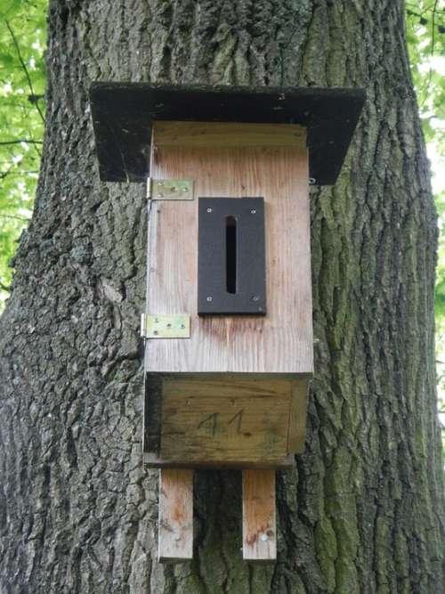 Nesting Box Aviary Bird Feeder Tree Nesting Place