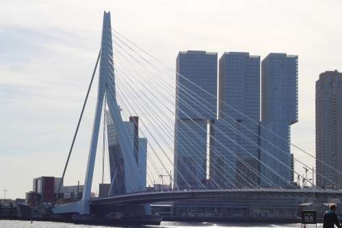 Netherlands Rotterdam Architecture Erasmus Bridge