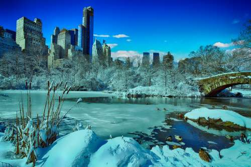 New York Central Park Winter Manhattan Skyline