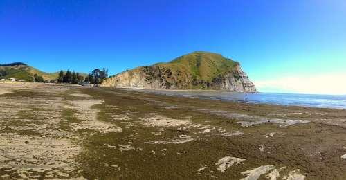 New Zealand Beach Sea Seaside Ocean Summer