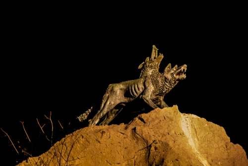 Night Wolves Pair Dark
