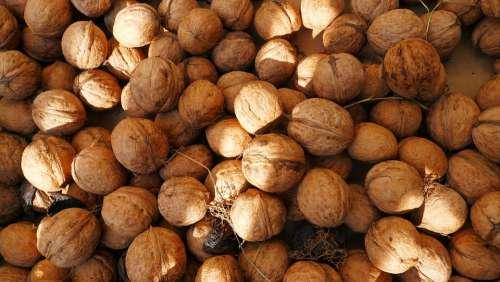 Nuts Walnuts Food Healthy Vegetarian Fruit Tasty