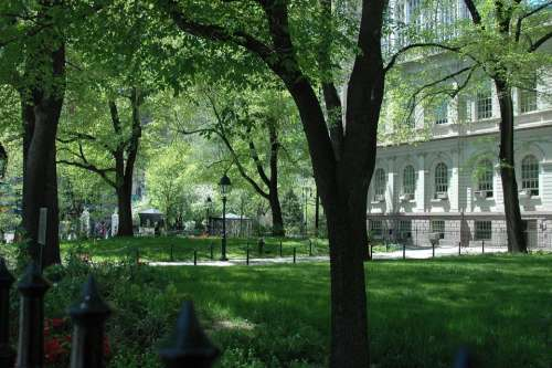 Nyc City Hall Park Building Trees Architecture
