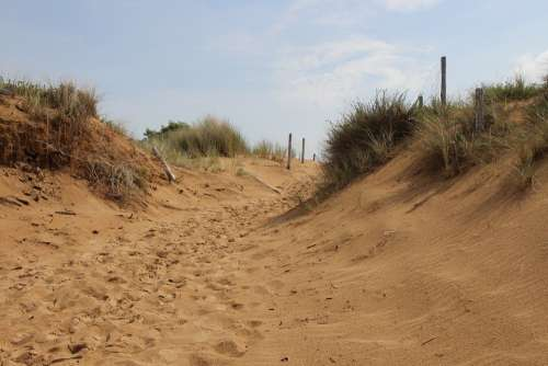 Oléron Beach Dune Sand Sea Ocean Holiday Freedom