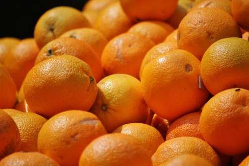 Oranges Citrus Fruits Citrus Fruit Fruit