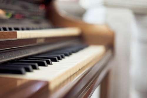 Organo Music Ilge Organ Church Instrument