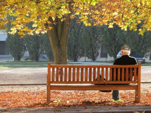 Ostfildern Autumn Lonely Man Tree Bank