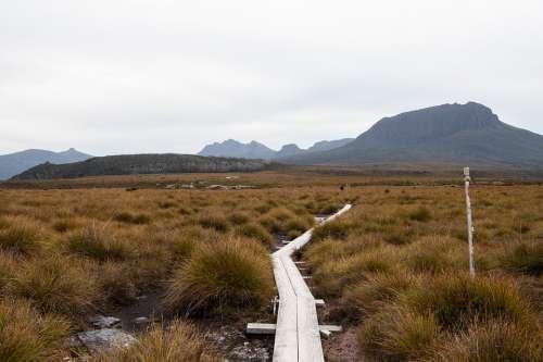 Overland Track Tasmania Hike Landscape Nature