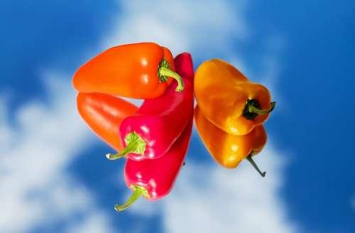 Paprika Vegetables Red Yellow Orange Mirroring
