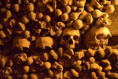 Paris Catacombs Skulls History Tourist Destination