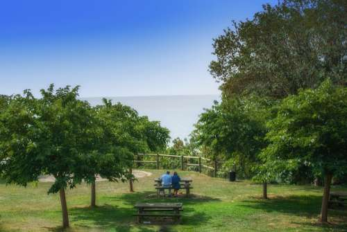 Park Landscape Green Couple Sky Nature Tree