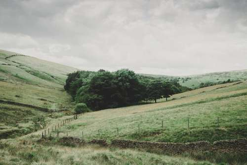 Pasture Field Rural Landscape Agriculture Grass