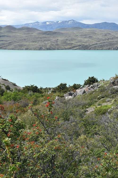 Patagonia Torres Del Paine National Park Lake Water