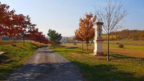 Path Landscape Autumn Bohemia