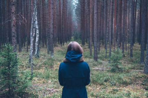 Person Forest Outdoor Standing Back Looking Wood