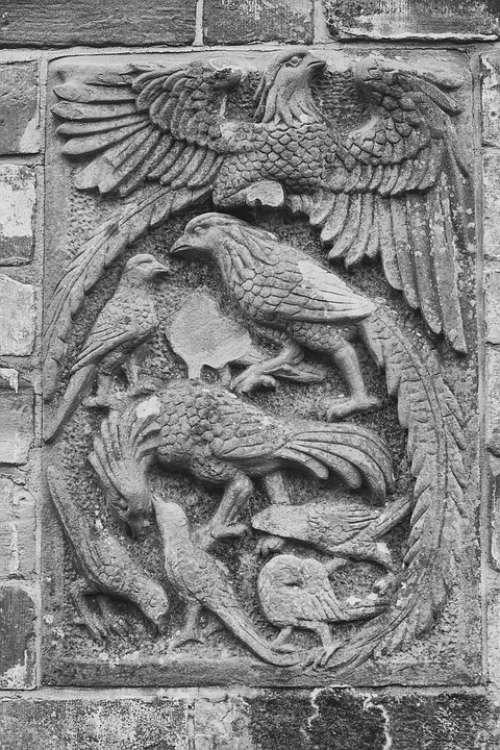 Pheasants Relief Sand Stone Historically Bird
