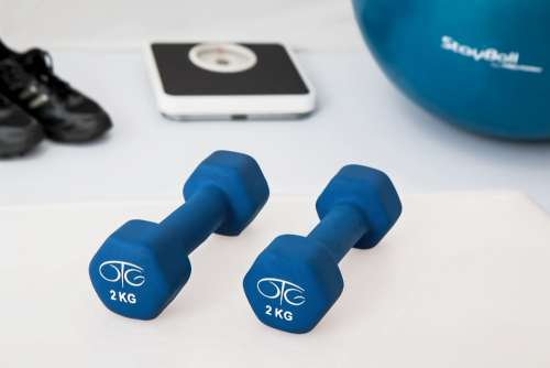 Physiotherapy Weight Training Dumbbell