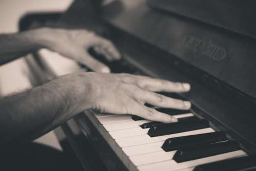 Piano Keys Hands Musical Instrument Music Melody