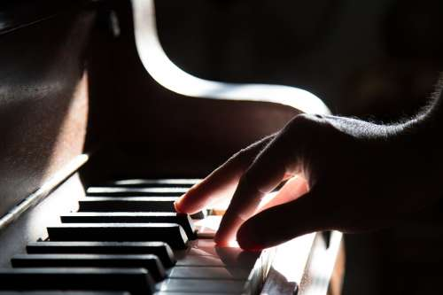 Piano Hand Playing Music Keyboard Instrument