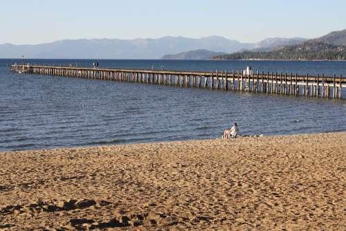 Pier Lake Sand Bird Water Landscape Jetty Nature