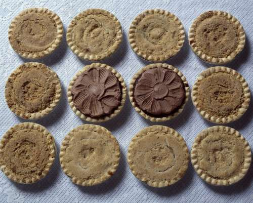Pies Shoo Fly Amish Baked Tasty Sweet Rich