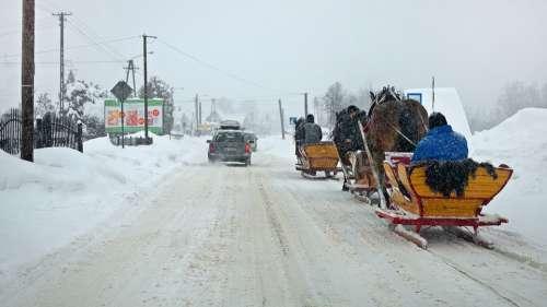 Pimp My Sleigh Winter Way Snow Transport Sled