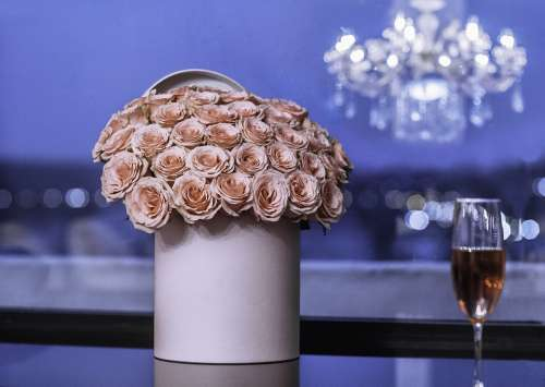 Pink Roses Rose Flowers Romantic Bouquet Romance