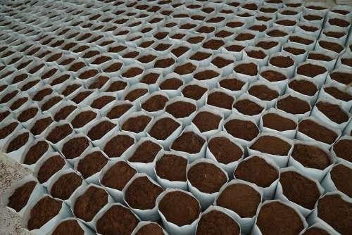 Planting Medium Agriculture Potting Material