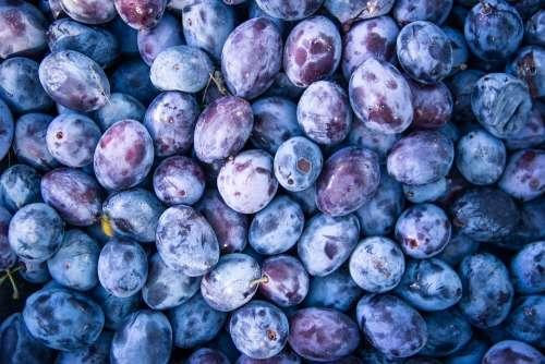 Plum Fruit Food Organic Fresh Healthy Sweet