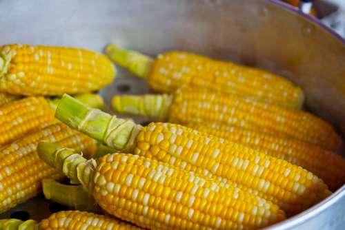 Pop Corn Yellow Popcorn Food Nutrition Eat